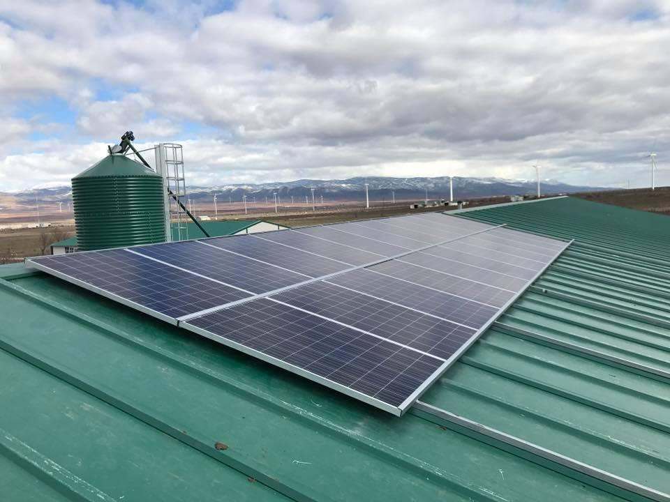Instalación autoconsumo fotovoltaico en granja de pollos en t.m. Dólar (granada)