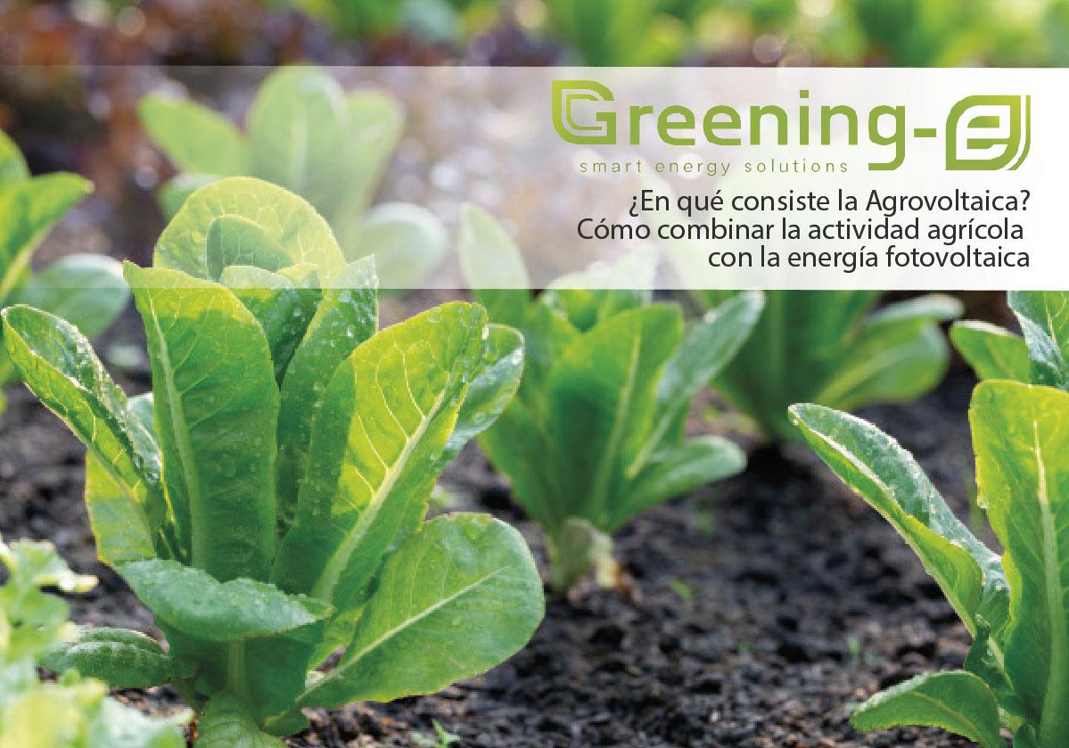 Agrovoltaica o como combinar la actividad agrícola con la energía fotovoltaica